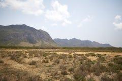 Désert avec des montagnes Image stock
