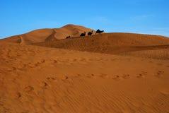 Désert avec le ciel bleu et le chameau de pierre images libres de droits