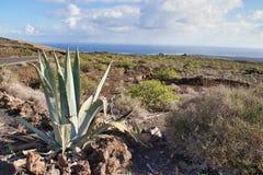 Désert d'îles Canaries images stock