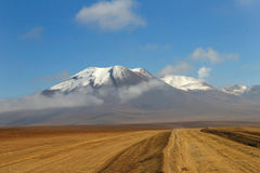 Désert d'Atacama chilien Images stock