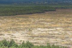 Désert de Bledow, un secteur des sables entre Bledow et le village de Chechlo et Klucze en Pologne Photos libres de droits