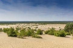 Désert de Bledow, un secteur des sables entre Bledow et le village de Chechlo et Klucze en Pologne Photographie stock libre de droits