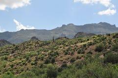 Désert de l'Arizona Image stock
