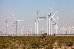 Désert de Mojave Images libres de droits