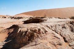 Désert de Namib Photos libres de droits