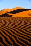 Désert de Namib - côte squelettique Images libres de droits