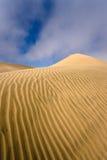 Désert de Namib - côte squelettique Photos libres de droits