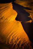 Désert de Namib - Namibie Photo stock