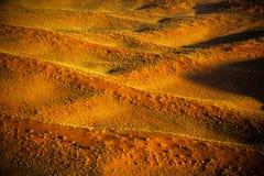 Désert de Namib - Namibie Images stock
