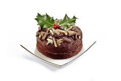 Désert de Noël Photo stock
