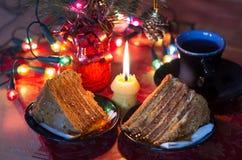 Désert de Noël Photographie stock libre de droits