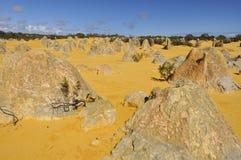 Désert de pinacles de l'Australie image stock
