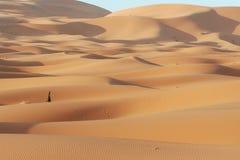 Désert de sable Photographie stock