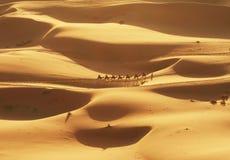 Désert de Sahara Photo libre de droits