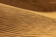Désert de Sahara Maroc Photo stock