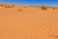 Désert de Sahara, Maroc Images stock