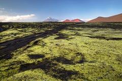 Désert de scories après éruption volcanique Tolbachik photo libre de droits