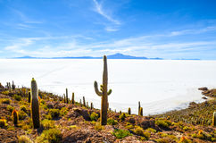 Désert de sel, Uyuni, Bolivie Photographie stock