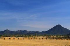 Désert de Turkana (Kenya) Images stock