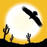Désert Eagle Landscape Photos libres de droits