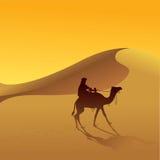 Désert et chameau de Sahara illustration de vecteur