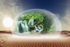 Désert et nature sous le verre images libres de droits