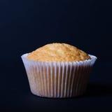 Désert frais de petit gâteau avant décoration Foyer sélectif image libre de droits