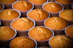 Désert frais de petit gâteau avant décoration Foyer sélectif toned Photo stock