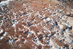 désert martien quasi pierreux Images libres de droits