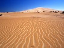 Désert omanais Photo libre de droits