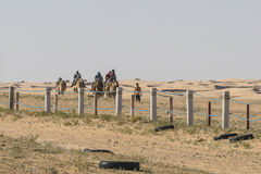 désert Sahara de caravane de chameau Photos libres de droits
