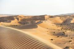 Désert Wahiba Oman Photos libres de droits