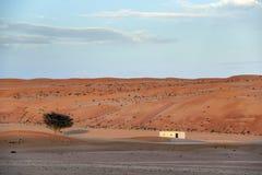 Désert Wahiba Oman de bâtiment Images stock