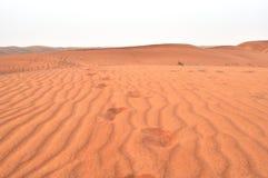 Déserts des EAU photos libres de droits
