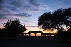 Déserts et nature d'Etosha Namibie en parcs nationaux photos libres de droits