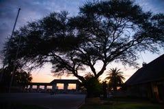 Déserts et nature d'Etosha Namibie en parcs nationaux photos stock