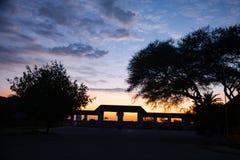 Déserts et nature d'Etosha Namibie en parcs nationaux photo libre de droits