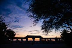 Déserts et nature d'Etosha Namibie en parcs nationaux image libre de droits