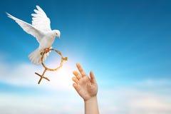 Désir de deux coups de main à la colombe tenant la branche dans le vol de forme de symbole de Vénus sur le ciel bleu Photographie stock