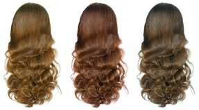 Désire ardemment les poils de femmes Photo libre de droits