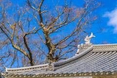 D?tail architectural de ch?teau de Matsumoto, Matsumoto, Japon photo libre de droits