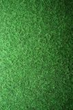 Détail artificiel d'herbe Photos libres de droits