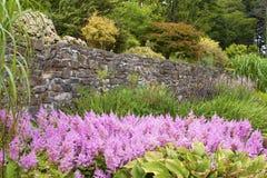 Détail d'un jardin anglais Images stock