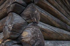Détail d'une cabane en rondins norvégienne traditionnelle photo stock