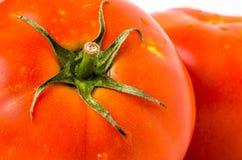 Détail d'une tomate fraîche Photographie stock