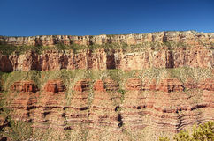 Détail de bord de canyon grand, Arizona, Etats-Unis Images stock