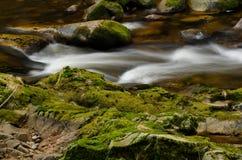 Détail de cascades Photographie stock libre de droits