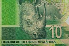 Détail de couche-point d'Africain de sout Images libres de droits