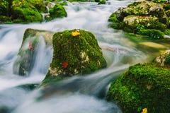 Détail de crique de montagne avec de l'eau les roches moussues et clair comme de l'eau de roche Image stock