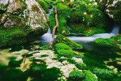 Détail de crique de montagne avec de l'eau les roches moussues et clair comme de l'eau de roche Photos libres de droits